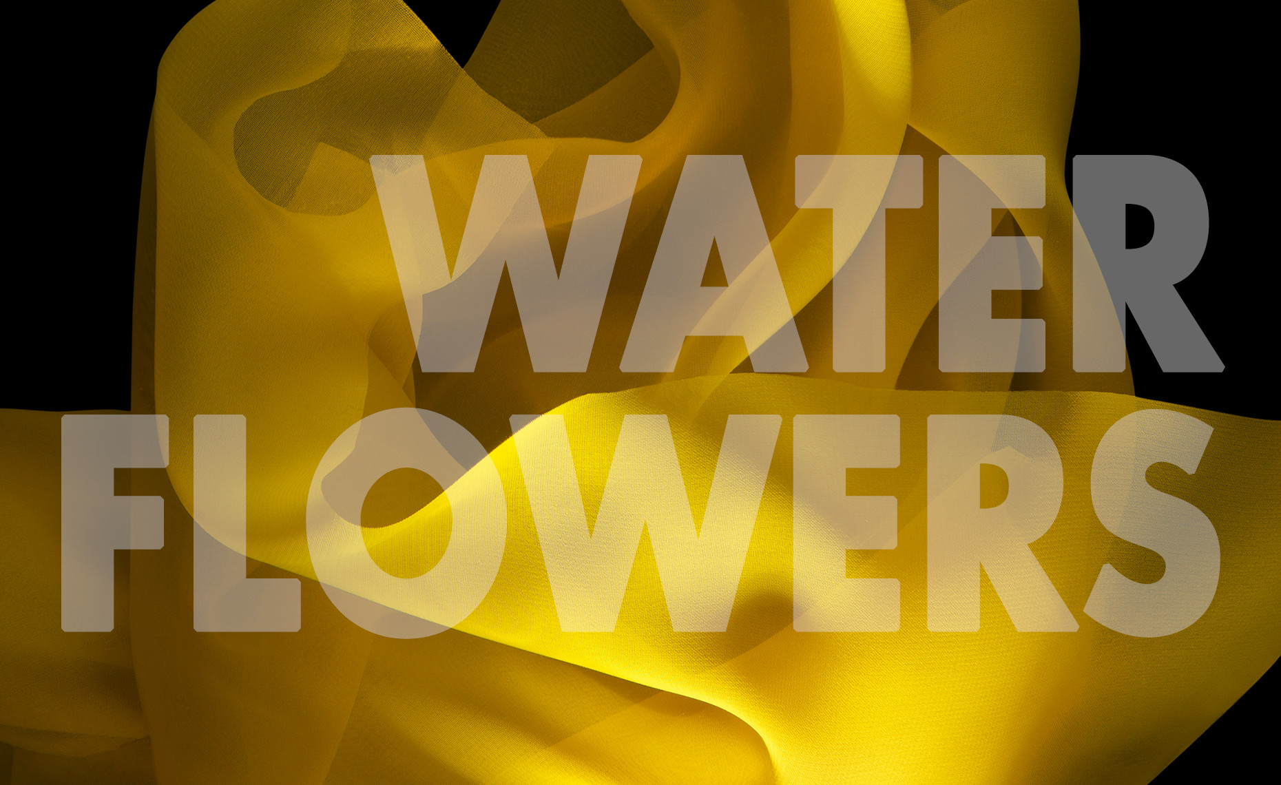 WaterFlowers_Copertina